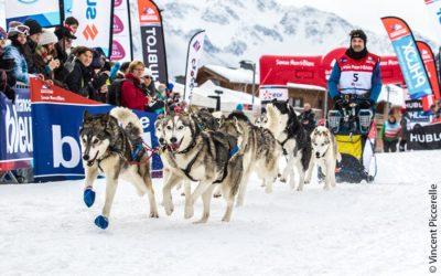 La Grande Odyssée Savoie Mont Blanc revient dans 4 mois !