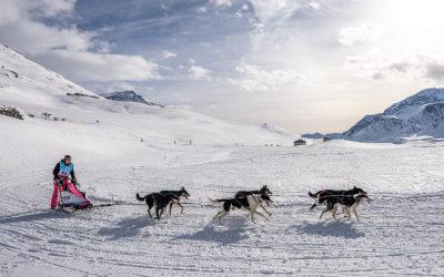 Spend a unique moment at La Grande Odyssée Savoie Mont Blanc 2021