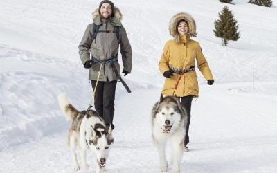 Le Staff de La Grande Odyssée Savoie Mont Blanc s'équipe des parkas chaudes Quechua