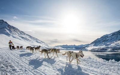 La Grande Odyssée Savoie Mont Blanc 2021 débute très prochainement !