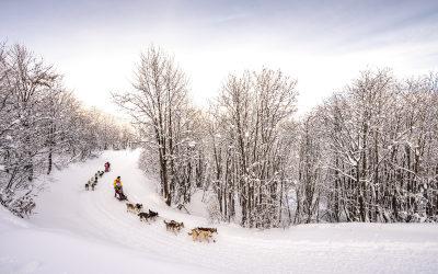 La Grande Odyssée Savoie Mont Blanc, une 17e édition inédite et exceptionnelle !